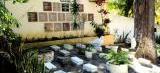 Idoso cuida do único cemitério de passarinhos do Brasil há quase 50 anos